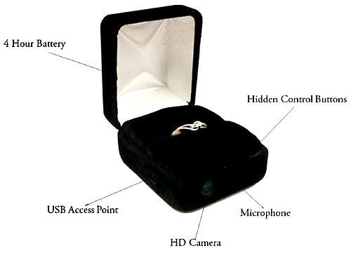 The Ring Cam  can be purchased   for $149.00 to $249.00, or you can rent the box for just $99.