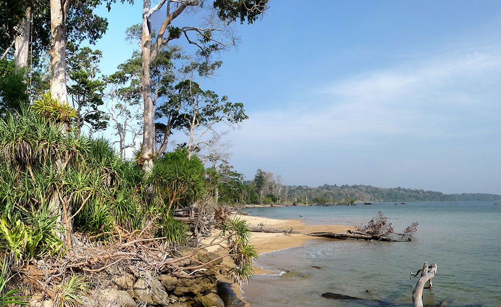 Rani_beach-view.jpg