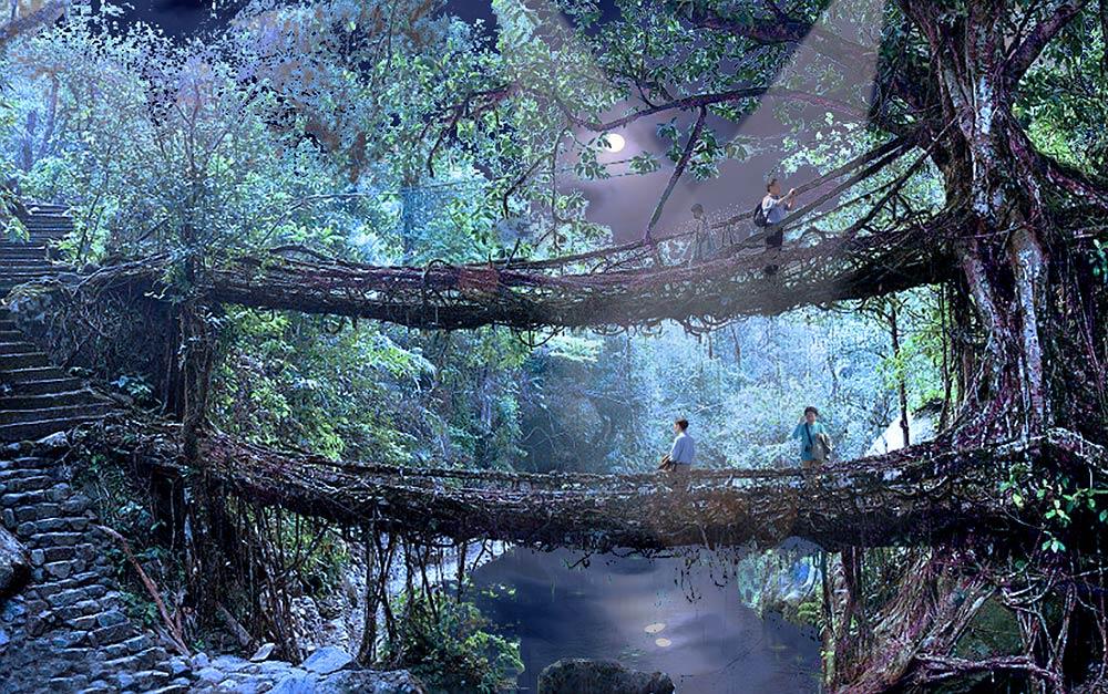 Tree_Houses.jpg