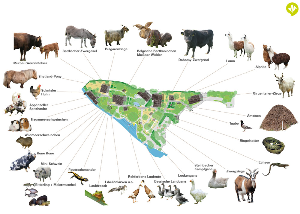 Masterplan_Biodiversitaet_muehlendorf.jpg