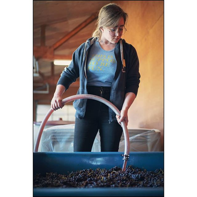 Just a babe with our 2019 vintage #genericpumpovershot  Some wholecluster Silvershot Vineyards Pinot gris in the insulated fish bin. I think about Jesus Guillen every pump over. He mastered wholecluster Pinot in this and every other fermentation vessel.  Remember your heroes.