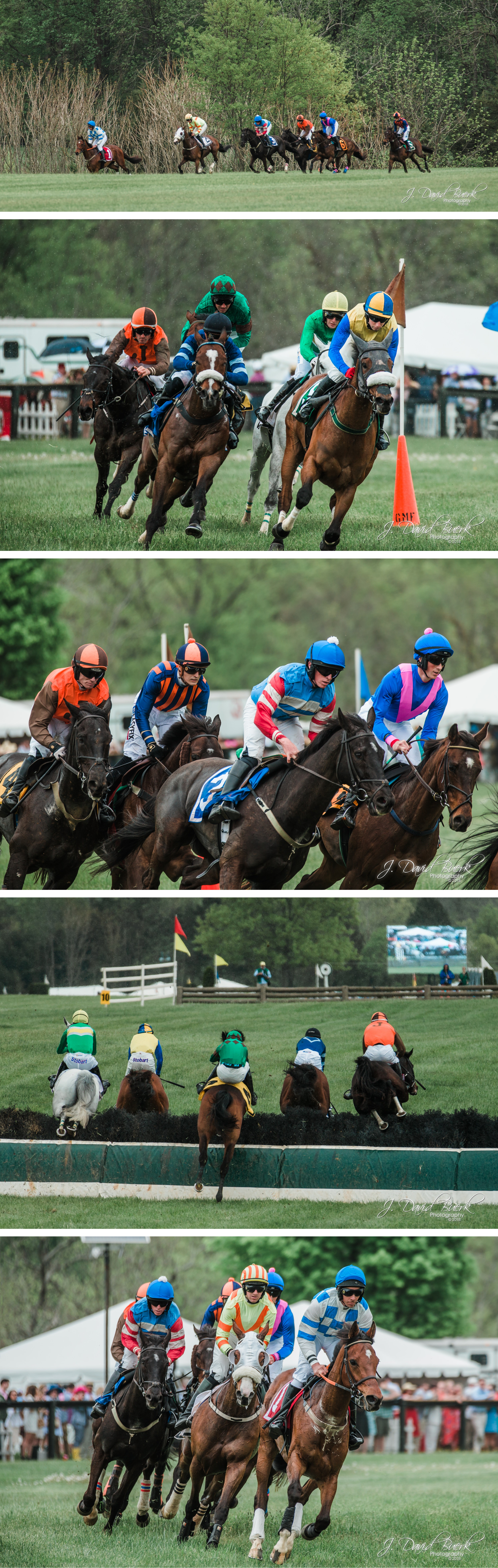 2018 Gold Cup 3.jpg