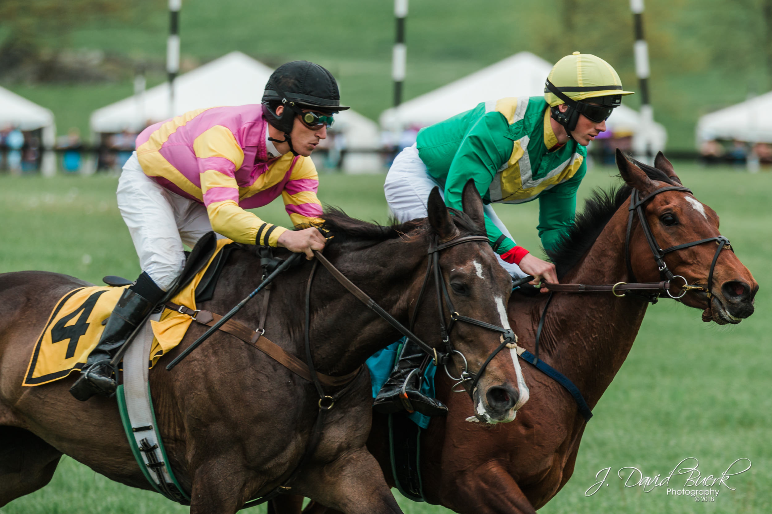 Equestrians during the 2018 Virginia Gold Cup.