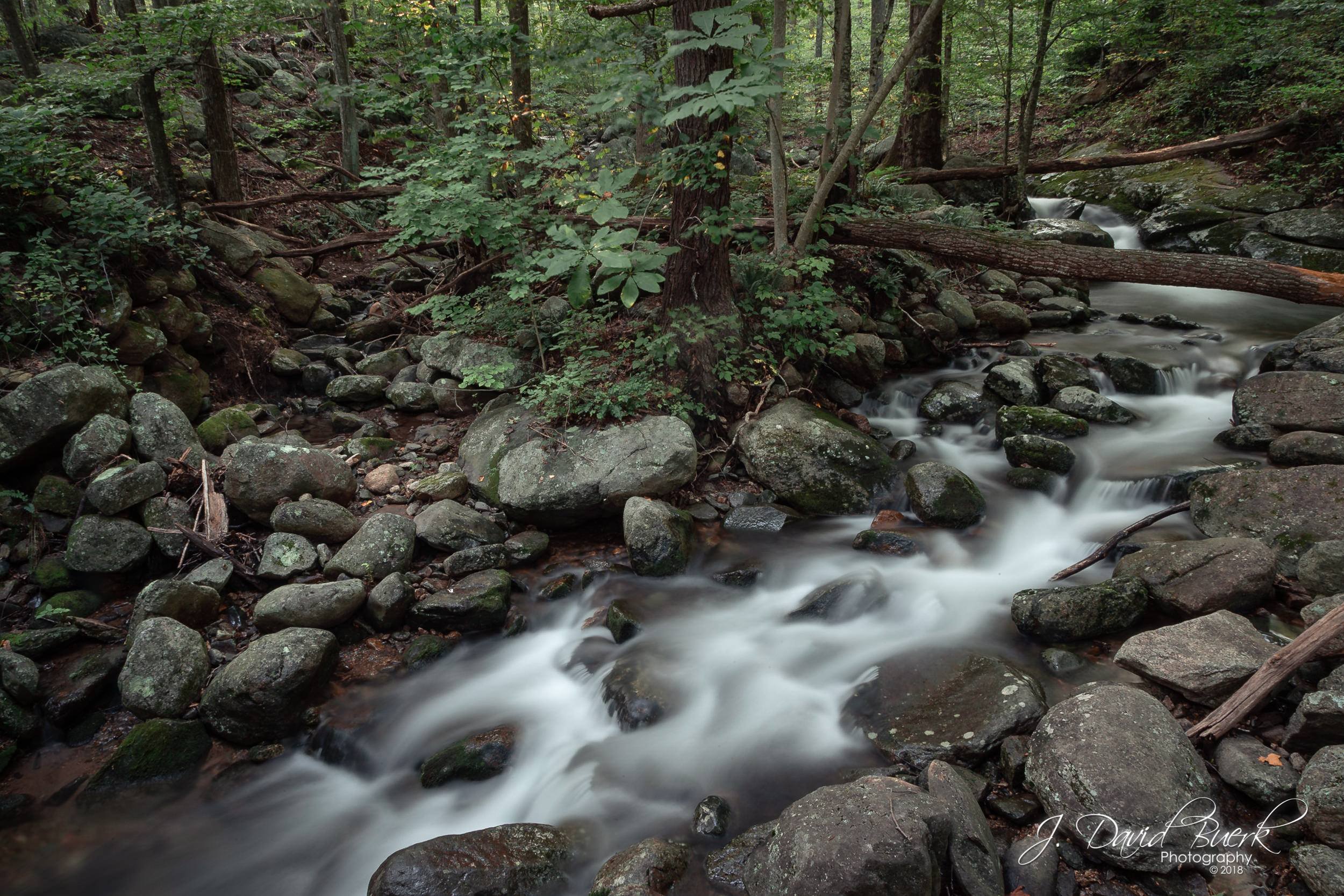 A stream in Shenandoah National Park.
