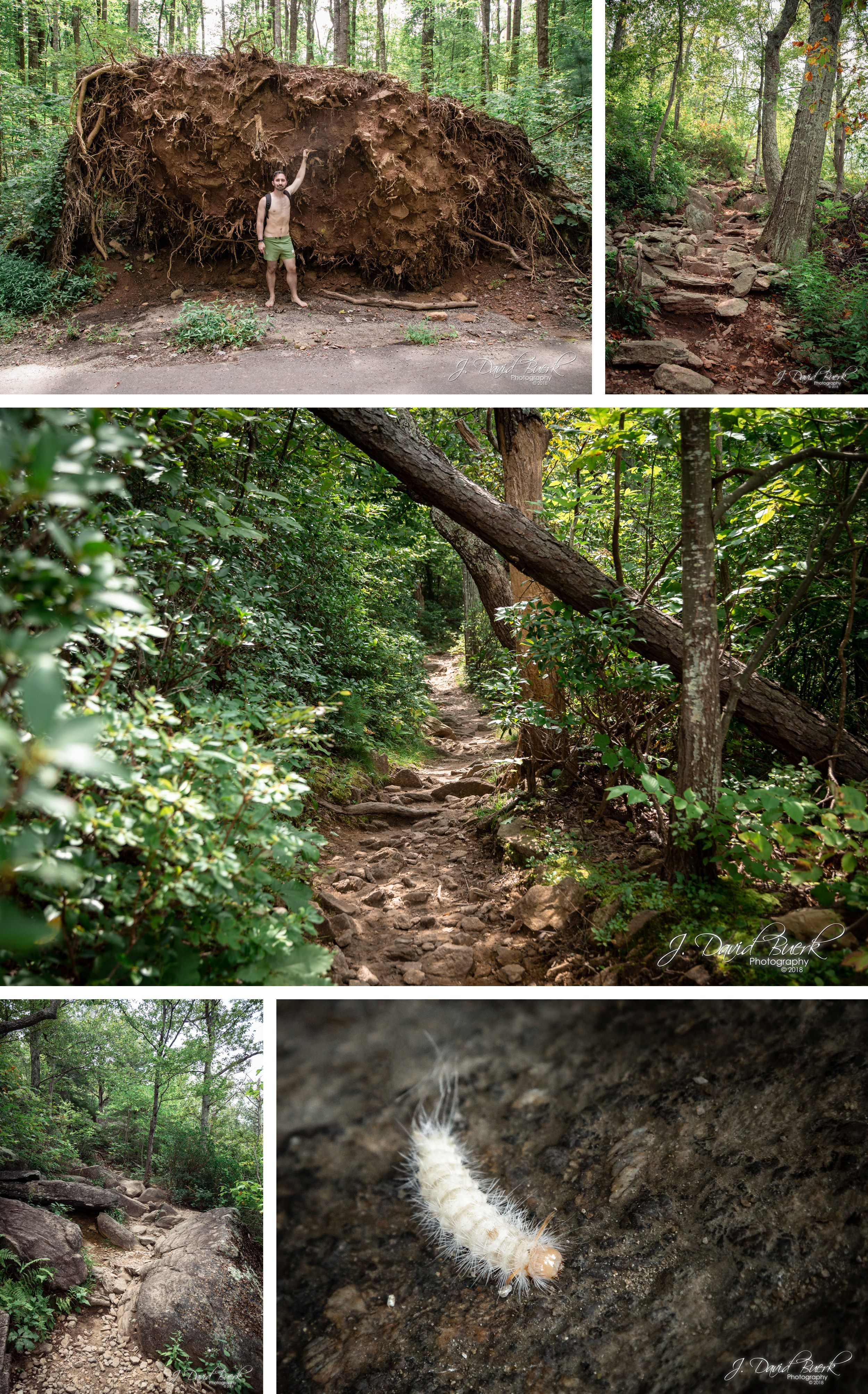 20180826 - Old Rag Mountain August 2018 2.jpg
