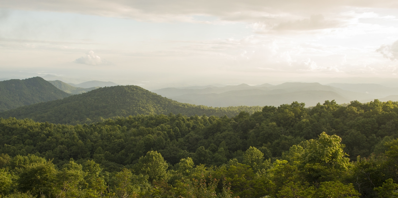 View to the west of Sassafras Mountain.