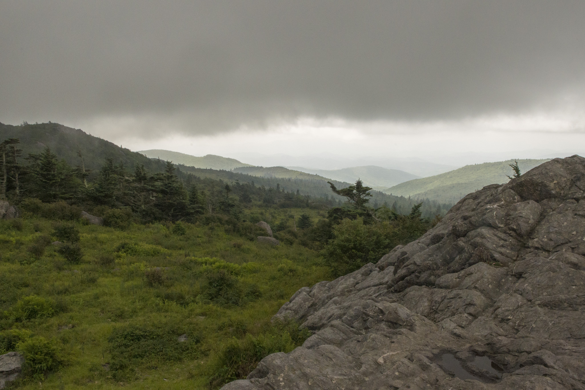 043_Mt_Rogers.jpg