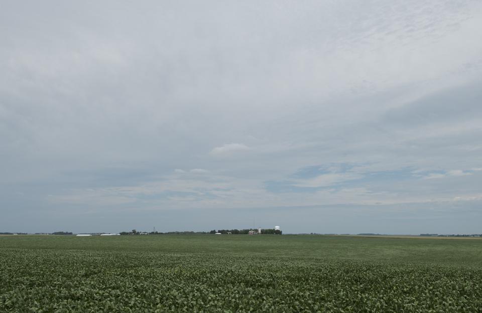 The soy fields surrounding Hawkeye Point