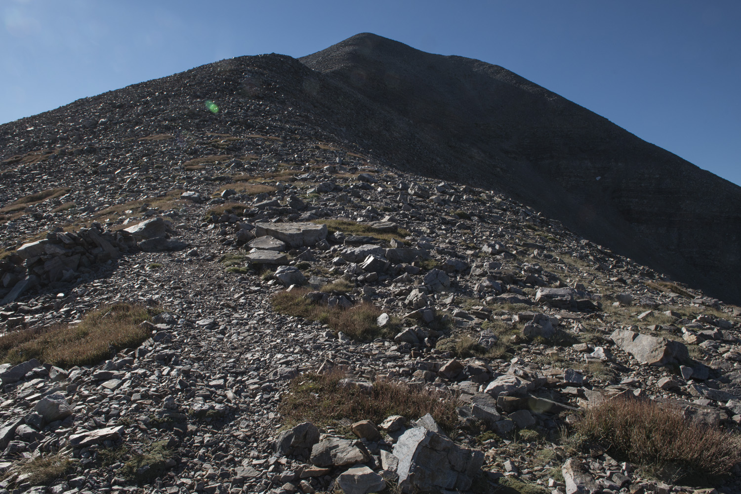 The trail above tree line. The scree goes all the way up.