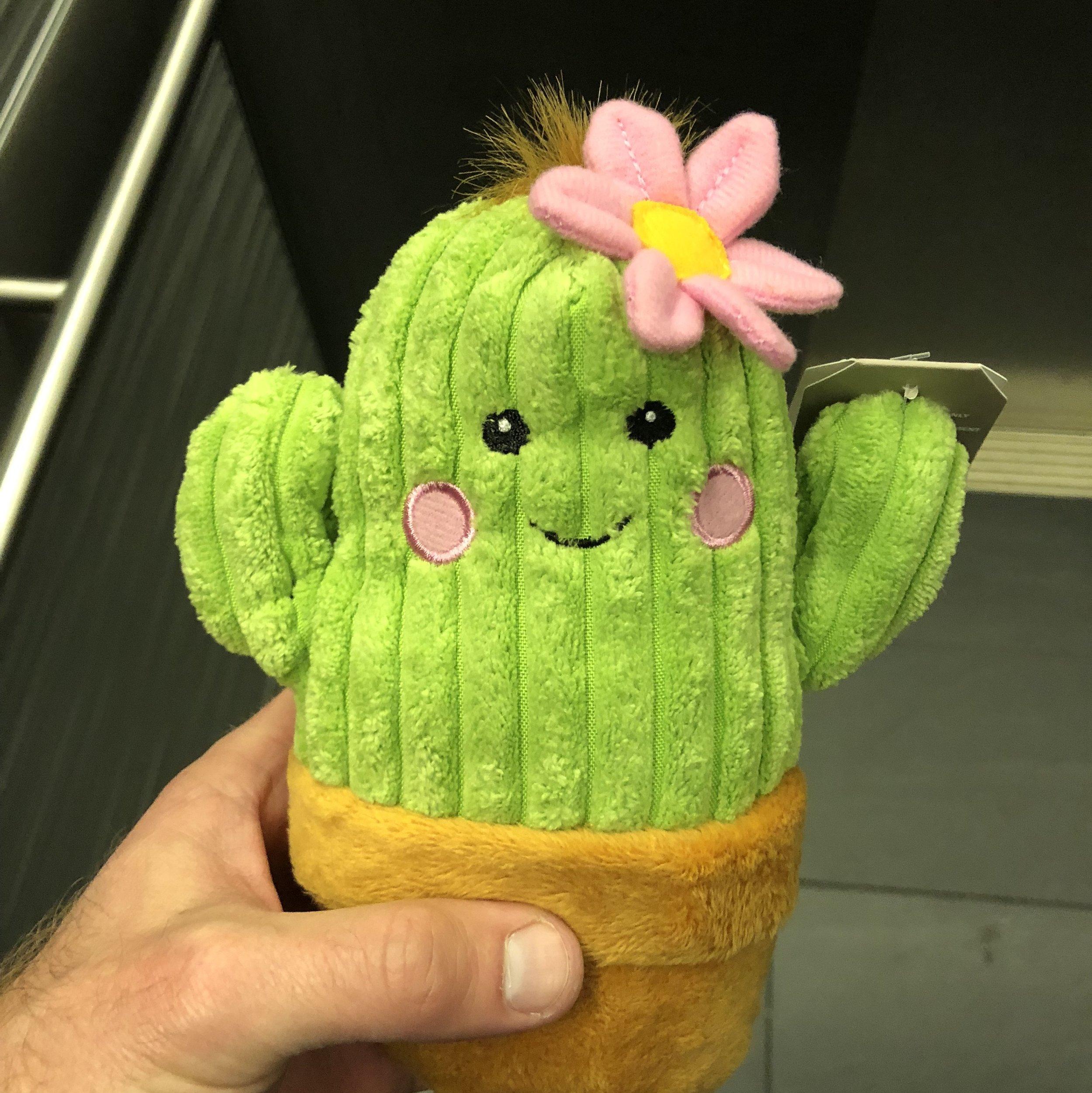 Gendered Stuffed Cactus.jpg