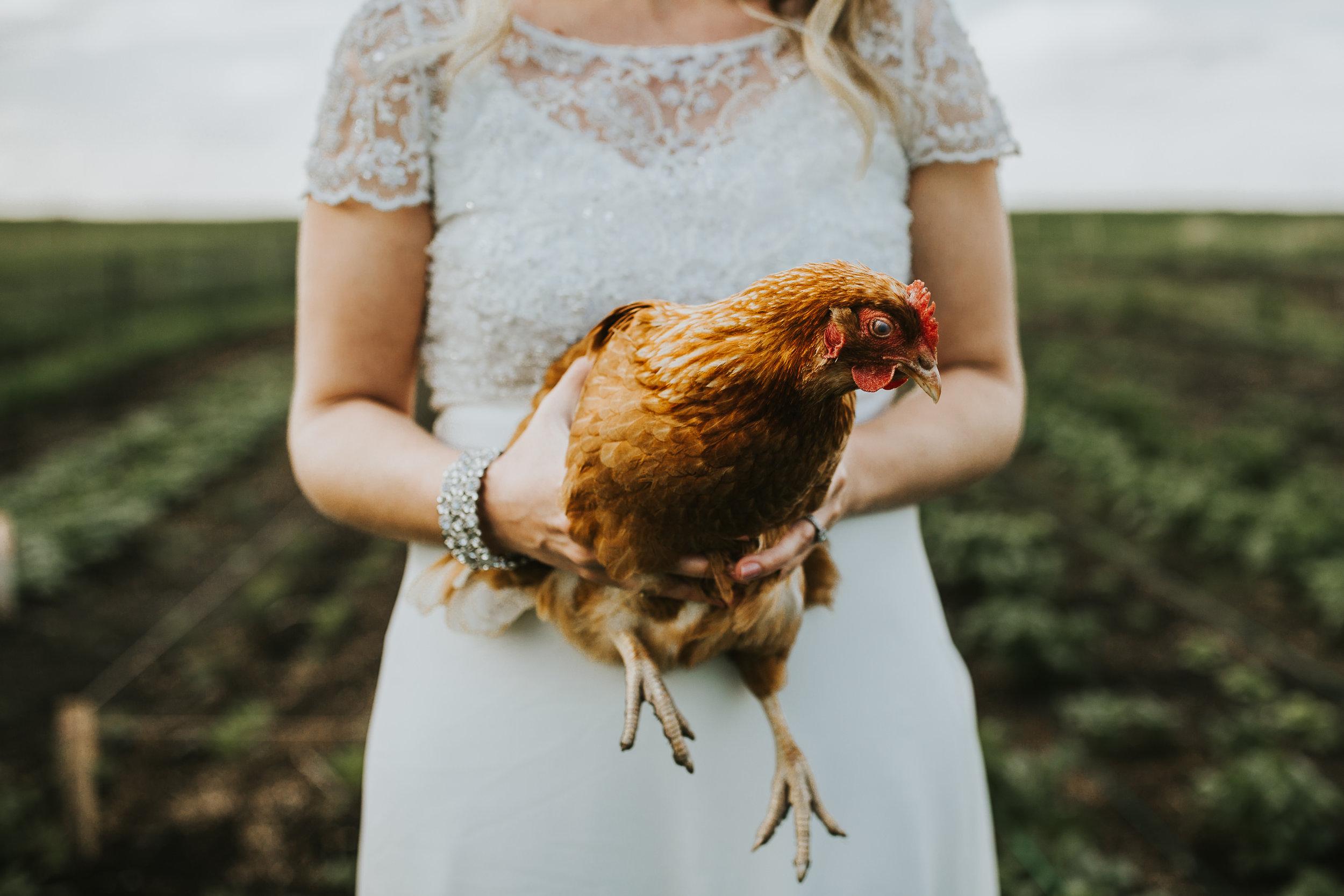 The-Gathered-Farm-Wedding-41