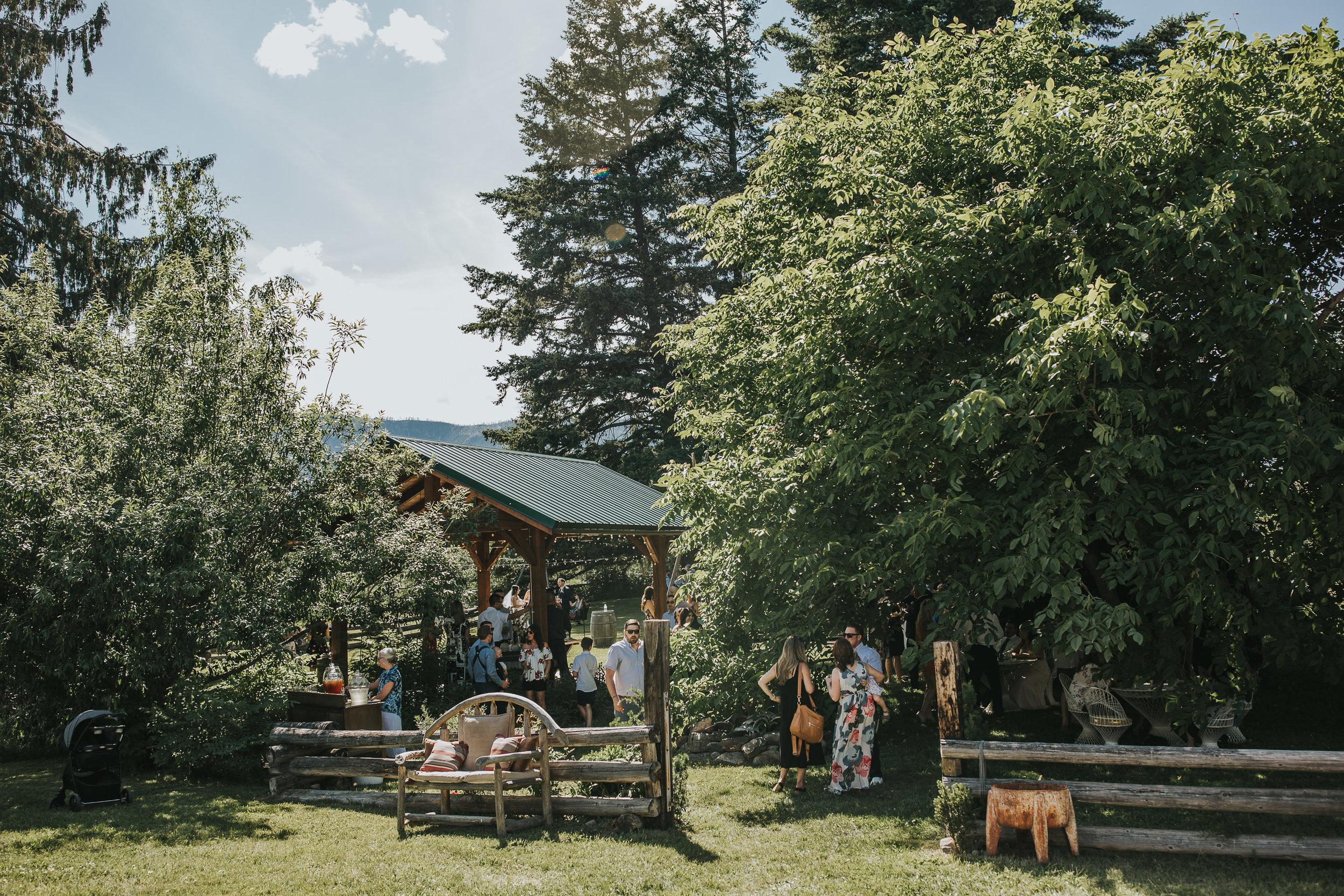 High-Country-Tree-Farm-Wedding