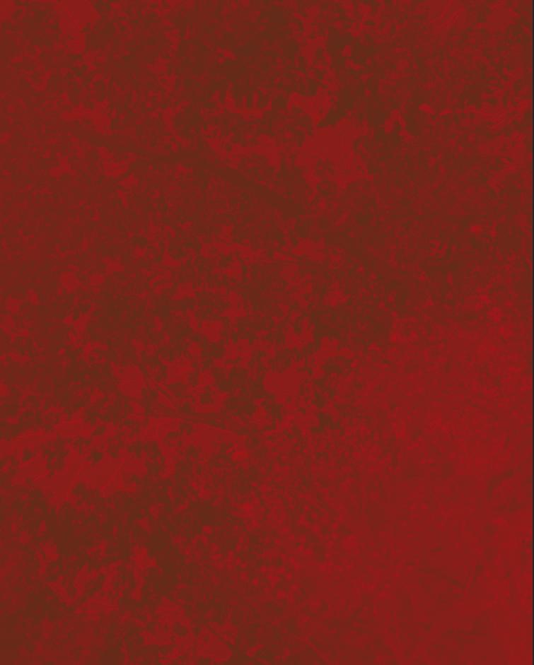 Screen Shot 2018-09-29 at 1.32.05 PM.png