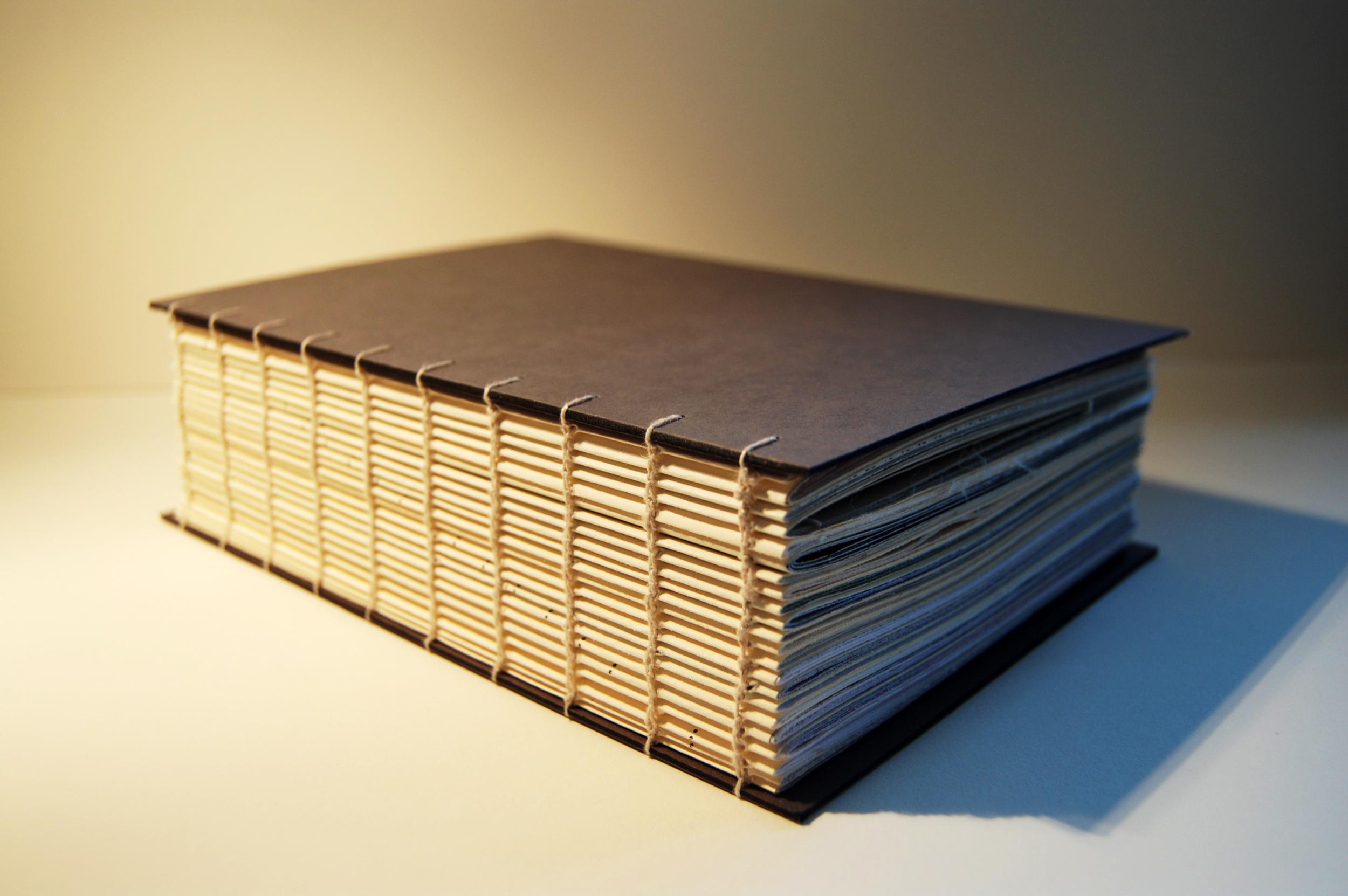 ViscomBook.jpg