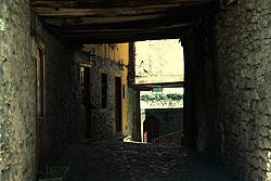 Little tunnels like this are very typical of smaller european towns. Usually the aligining walls are made of stone, and any floors/walkways built above are also made of stone, making the tunnel like walkway very mysterious, wondering what is on the other end.