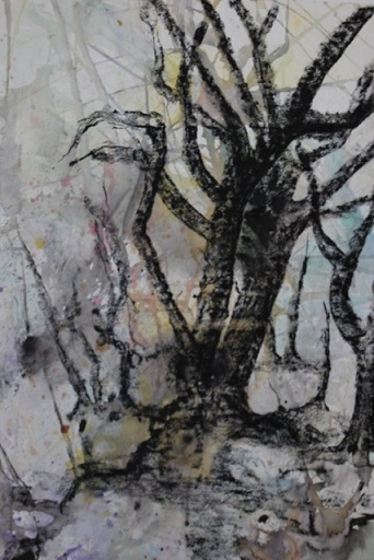 Charcoal and mixed media on Paper, Karen Murrell