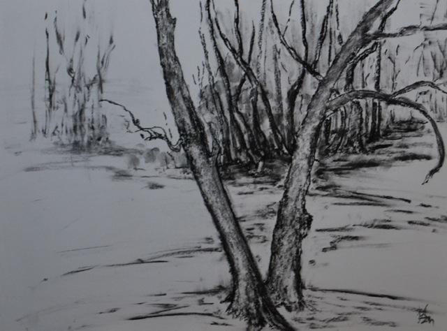 Charcoal on Paper, Karen Murrell