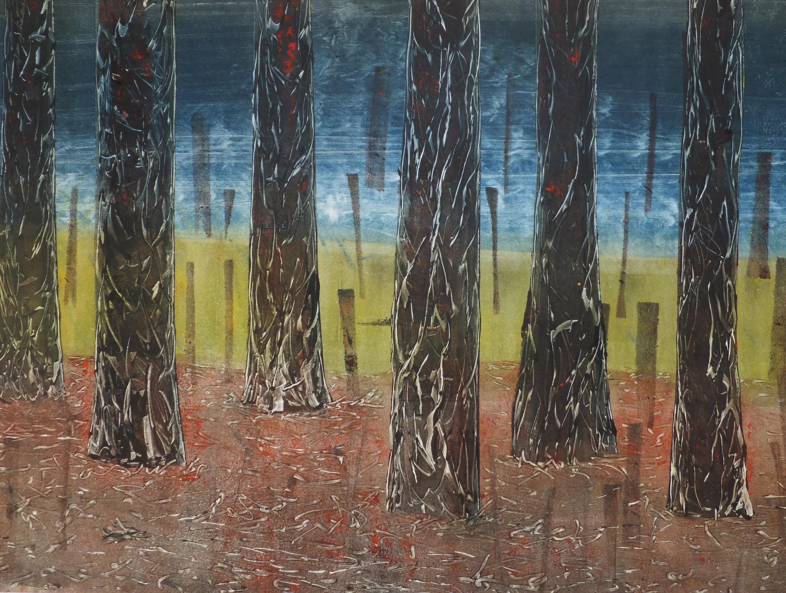 'Wide Open' Robyn Mackay, mono print,