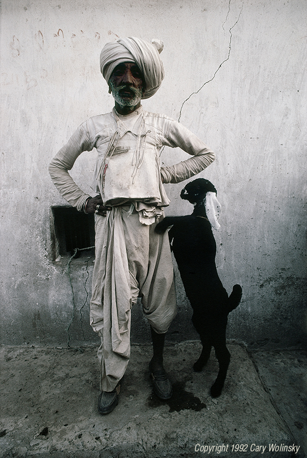 Robari Shepherd