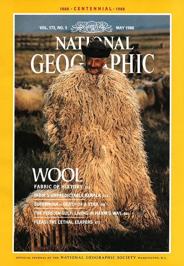 Wool Cover.jpg