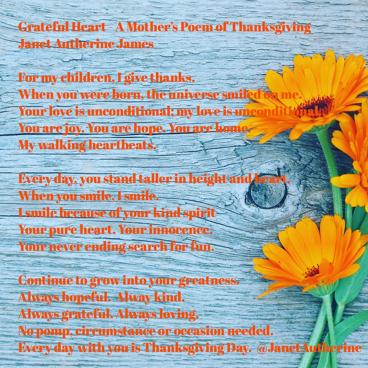 A Mother's Poem of Thanksgiving