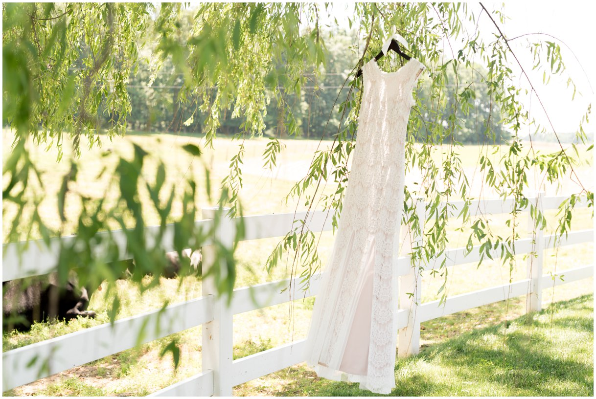 Bridal gown in willow tree lancaster pa family farm wedding photo
