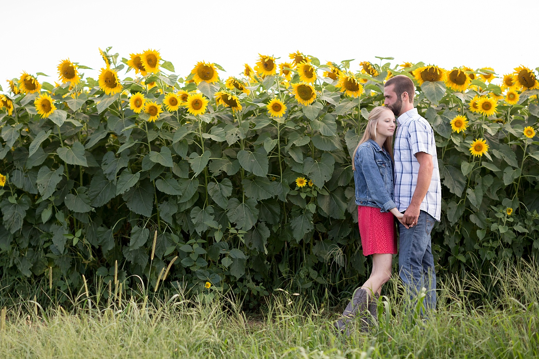 Romantic engagement session in sunflower field lancaster pa wedding photographer photo_0000.jpg