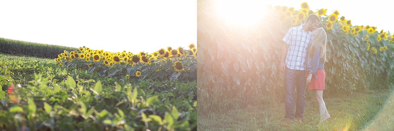 Romantic engagement session in sunflower field lancaster pa wedding photographer photo_0013.jpg