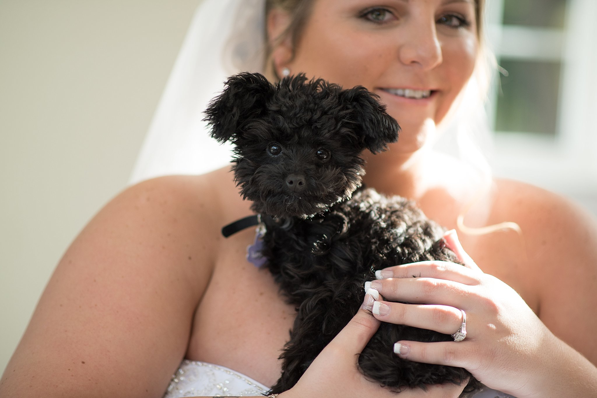 Cameron Estate Inn bridal portrait with puppy wedding photography photo_0127.jpg