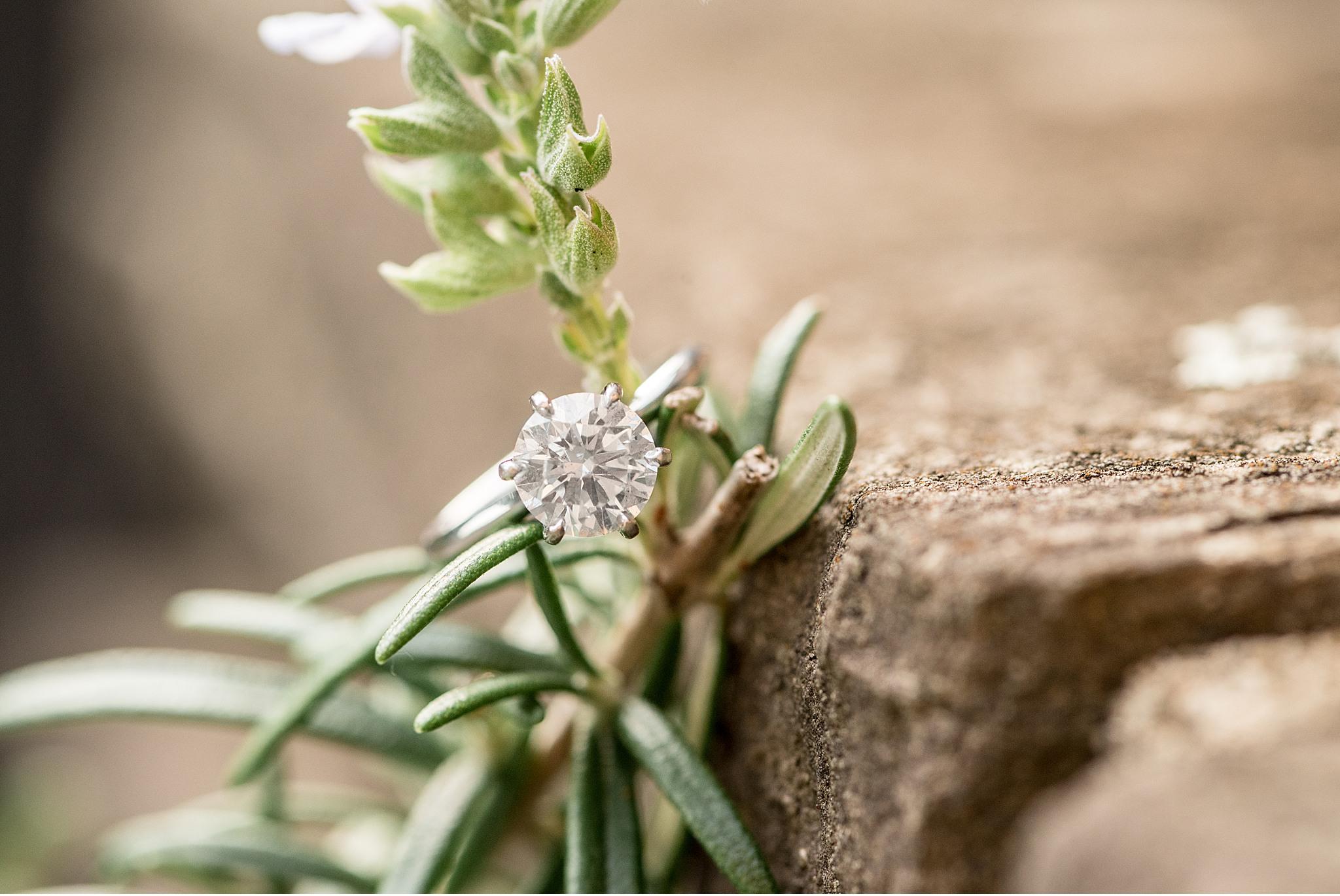 Conestoga House and Gardens Lancaster Wedding Engagement Photography_3897.jpg