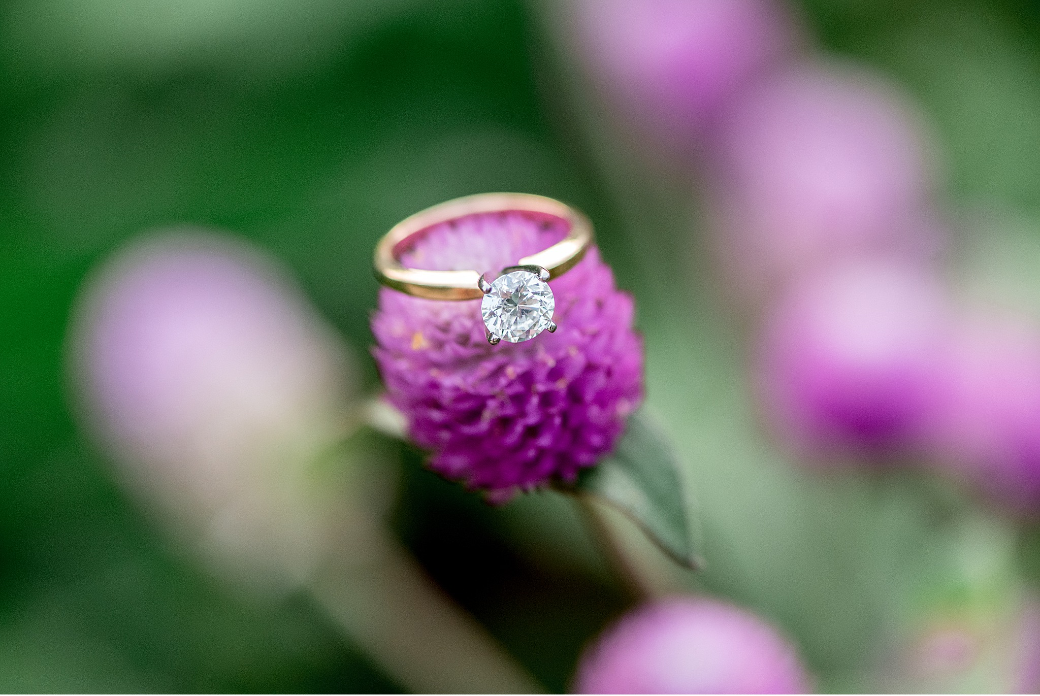 Lancaster County Park PA Summer Engagement Session Ring bling