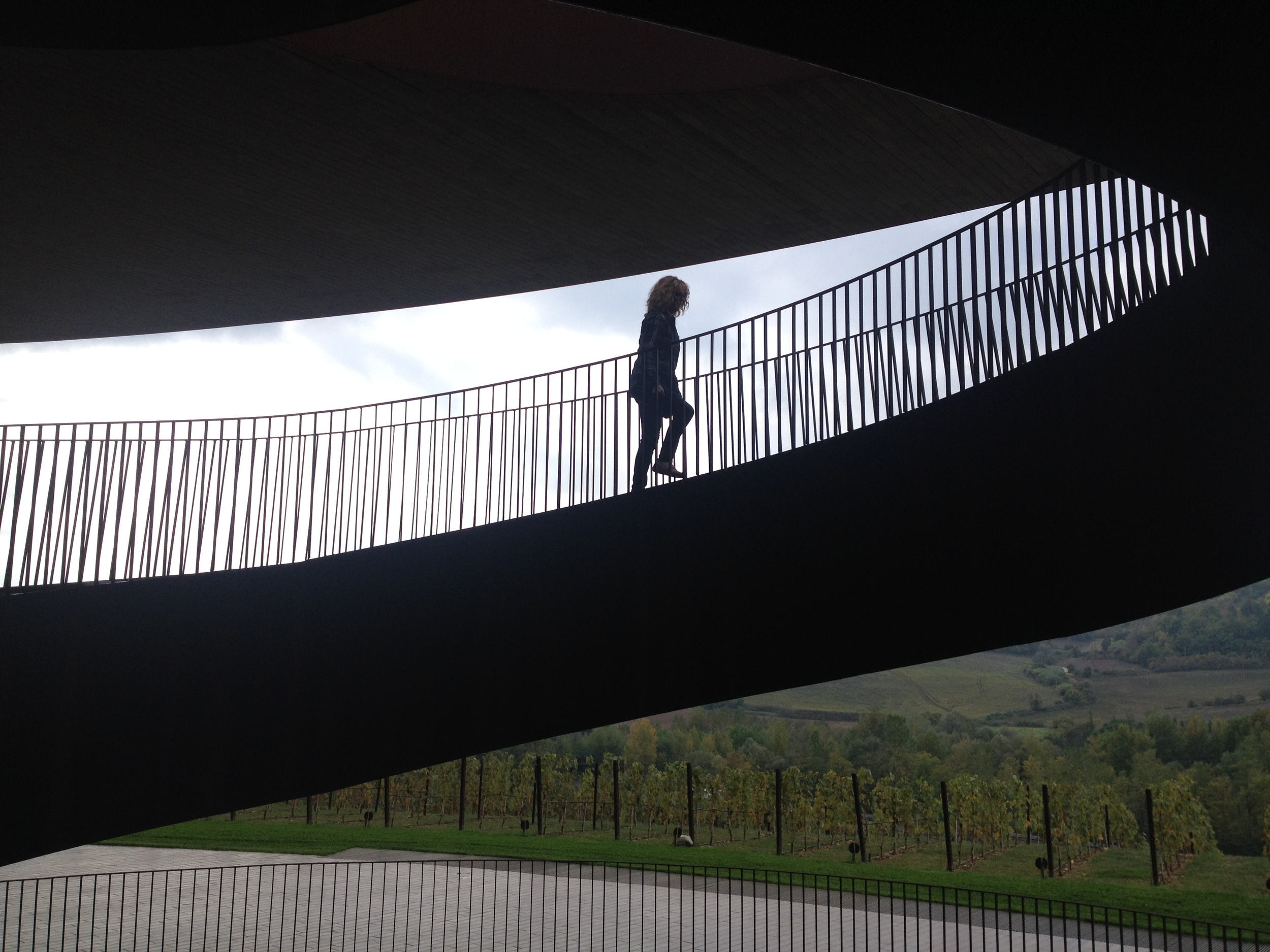 """Lynne ascends the sculptural for-ten steel stairway at Antinori. """"It was a magical place especially with the foggy drizzle that made me feel like I was in a dream as we looked over the luscious hills of Chianti. The wine pairing lunch was very special and the tour was just right."""""""