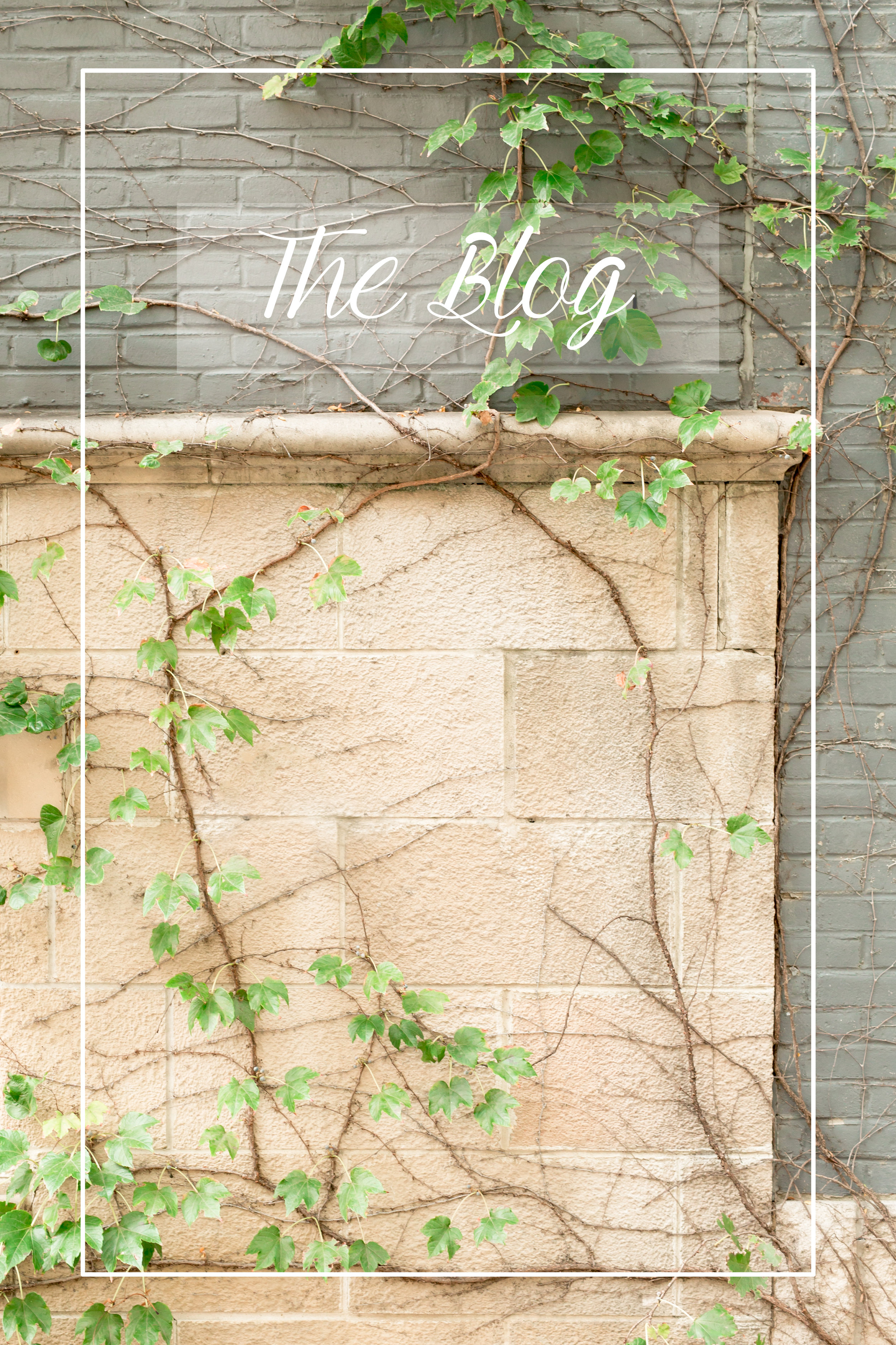 website -blog.jpg