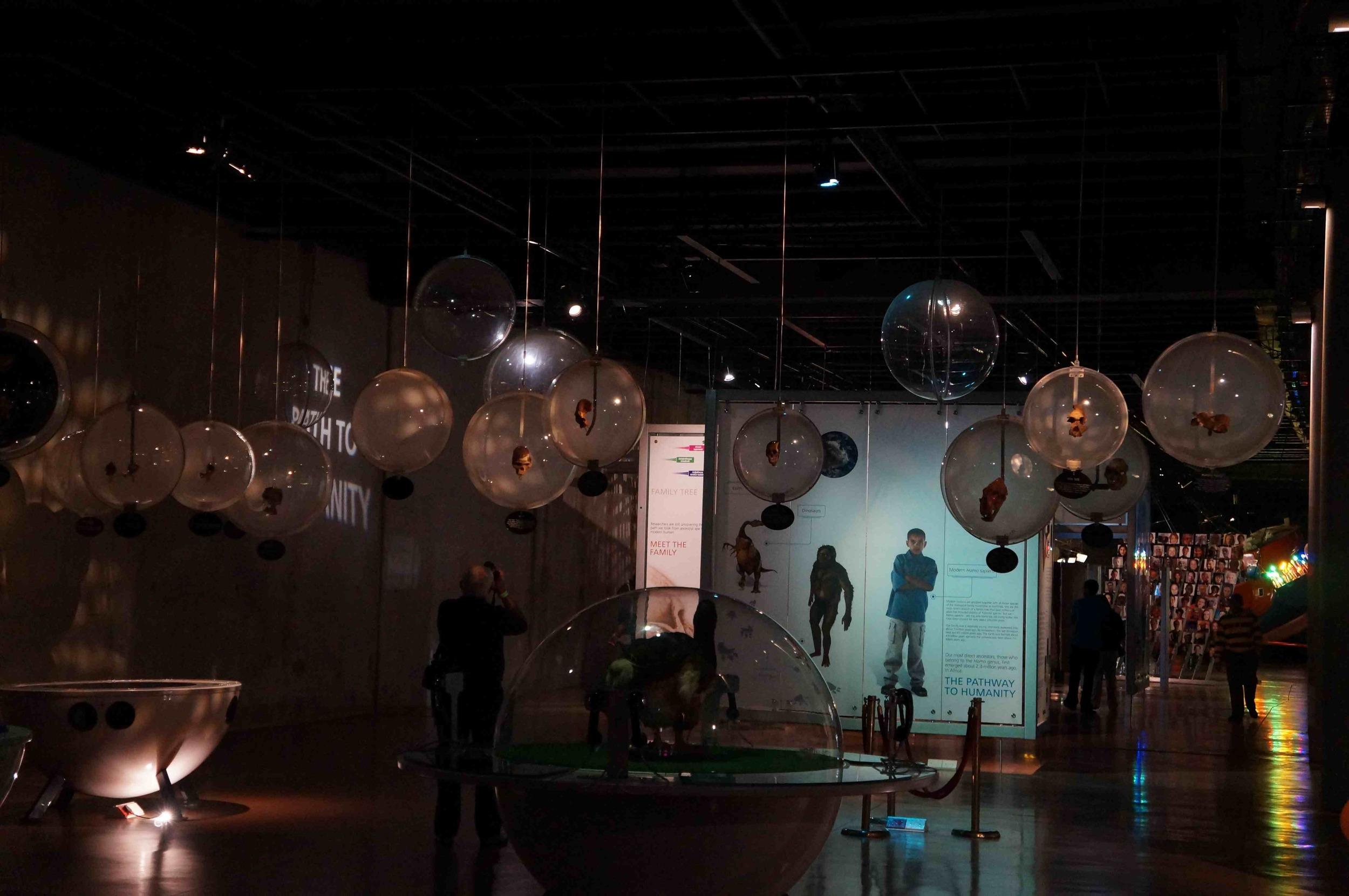 Bubbles Exhibit, Maropeng