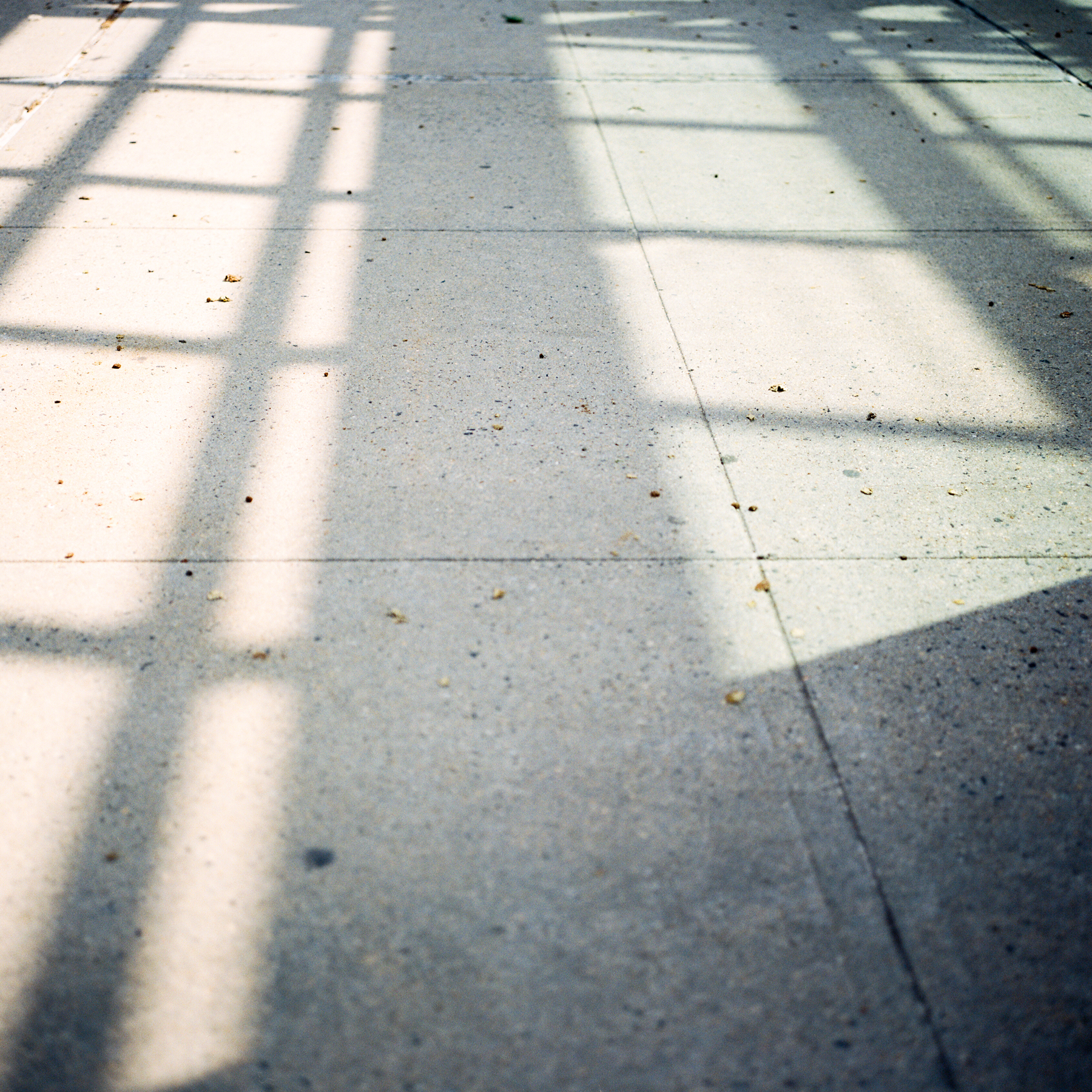 melesemiller_newyorktravel-23.jpg