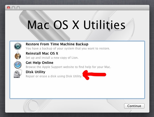 Yes, I had to pull this image from the internet. There is no way you would be installing a new copy of Lion in 2018.