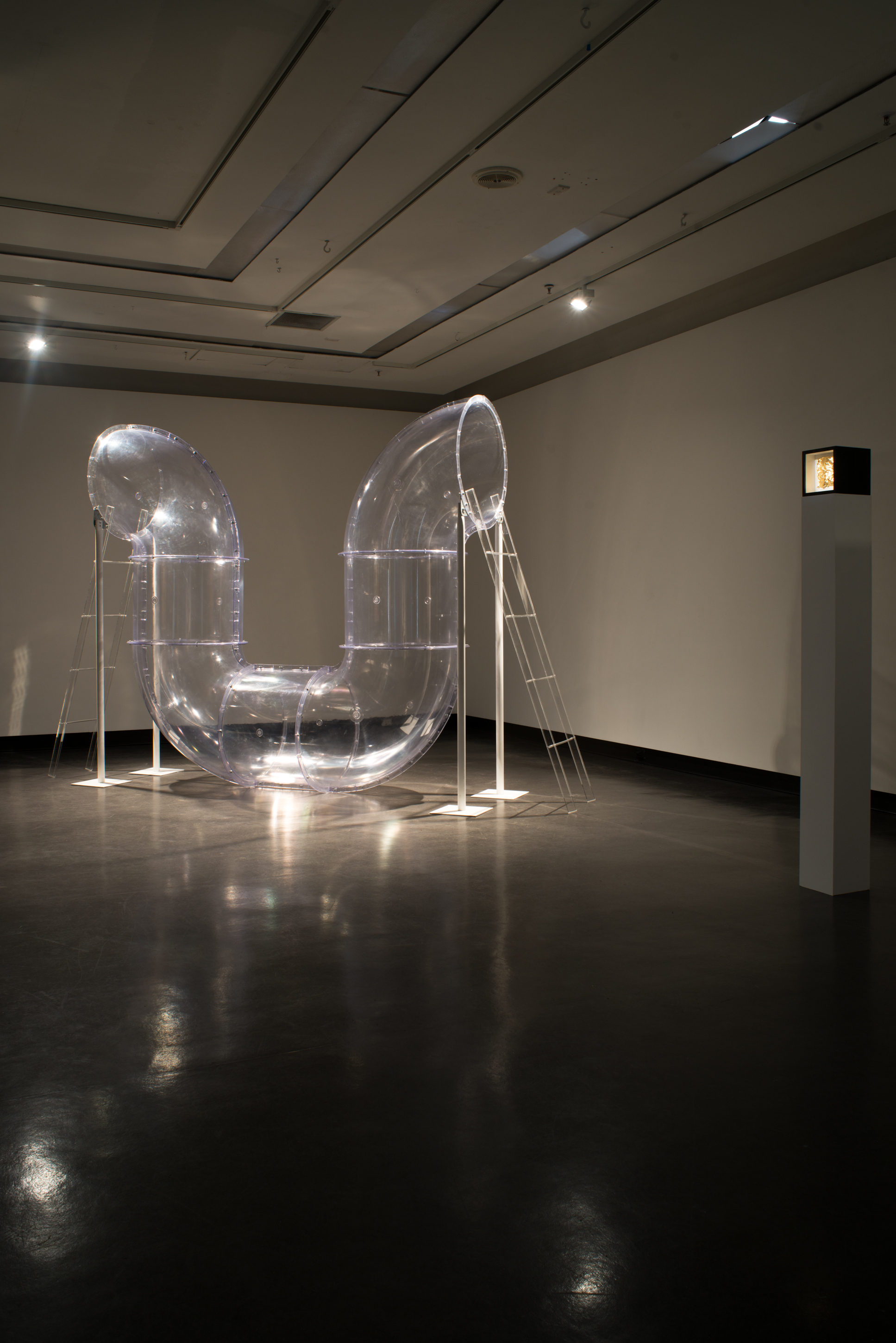 installation view -  Mirror state  and  The truth is a copy