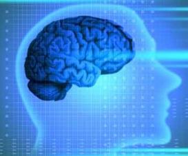 neurological-diseases.jpg