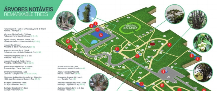 guia de visita •  visitor's guide