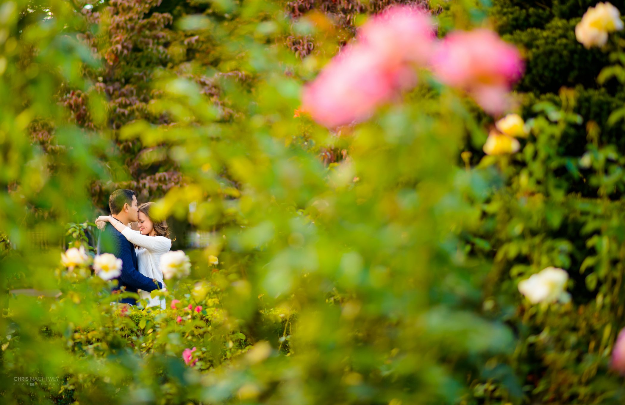 artistic-boston-ma-wedding-photographers-chris-nachtwey.jpg