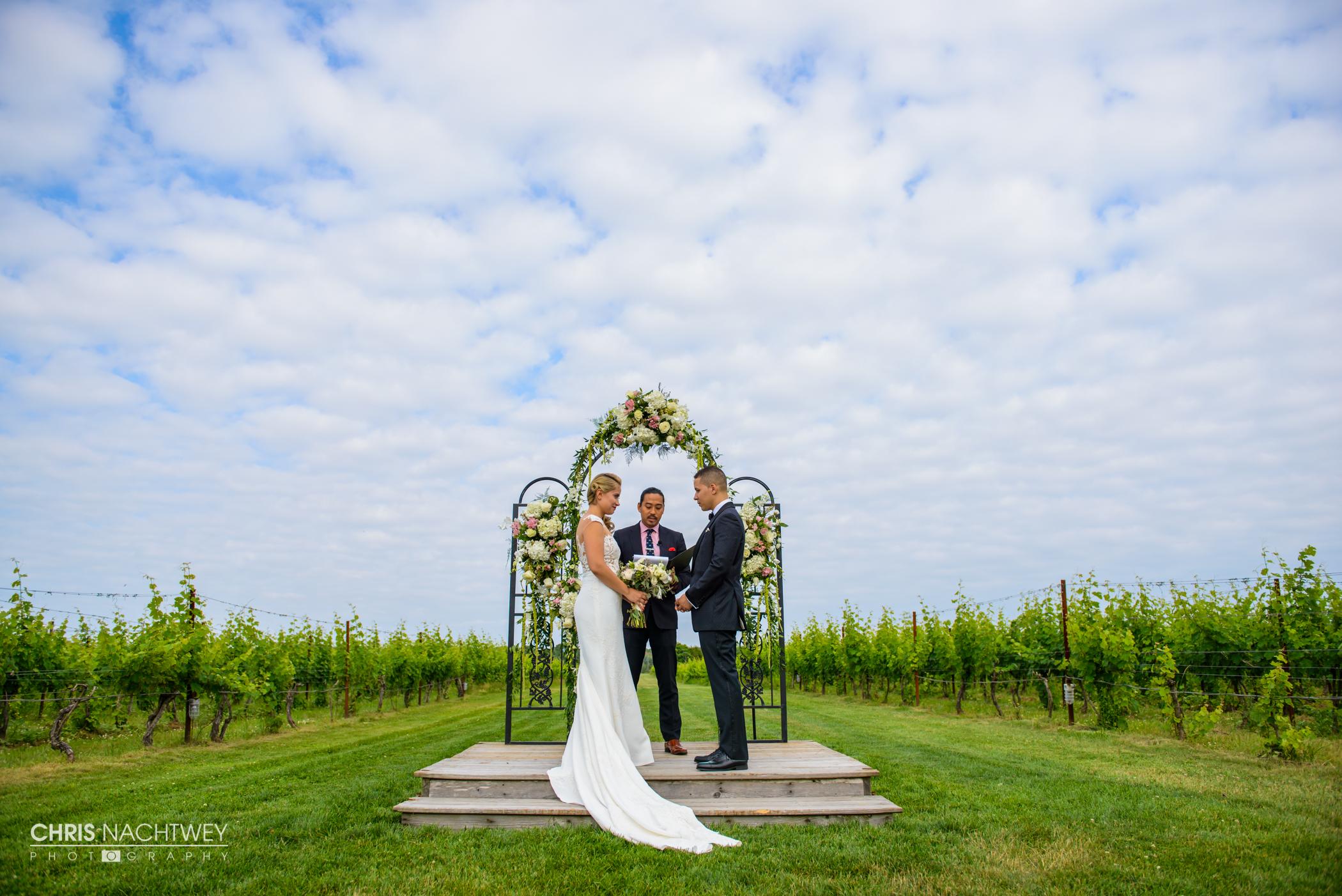 wedding-saltwater-farm-vineyard-photos-stonington-ct-chris-nachtwey-photography-2016-ana-austin-21.jpg