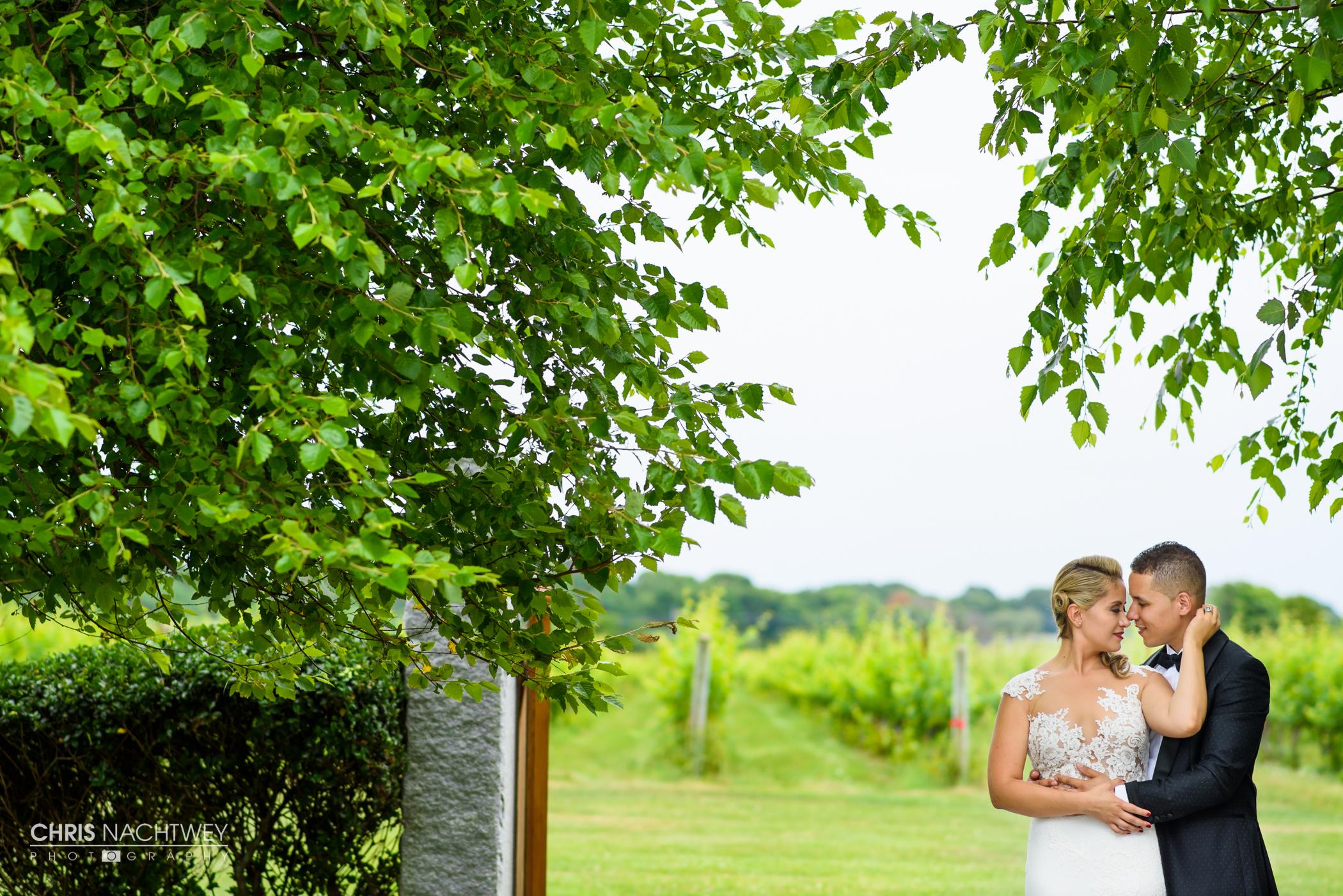 wedding-saltwater-farm-vineyard-photos-stonington-ct-chris-nachtwey-photography-2016-ana-austin-17.jpg
