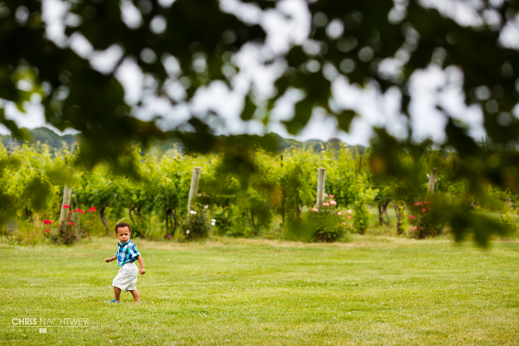 wedding-saltwater-farm-vineyard-photos-stonington-ct-chris-nachtwey-photography-2016-ana-austin-28.jpg