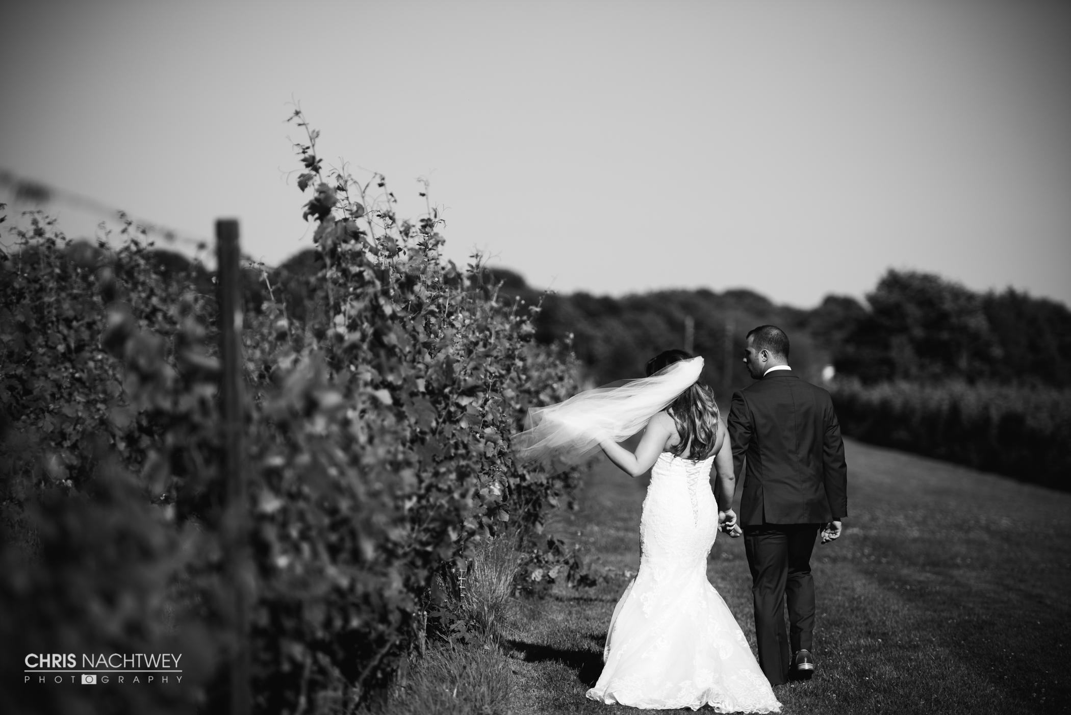 saltwater-farm-vineyard-wedding-photos-lindsay-gabe-chris-nachtwey-photography-2017-41.jpg