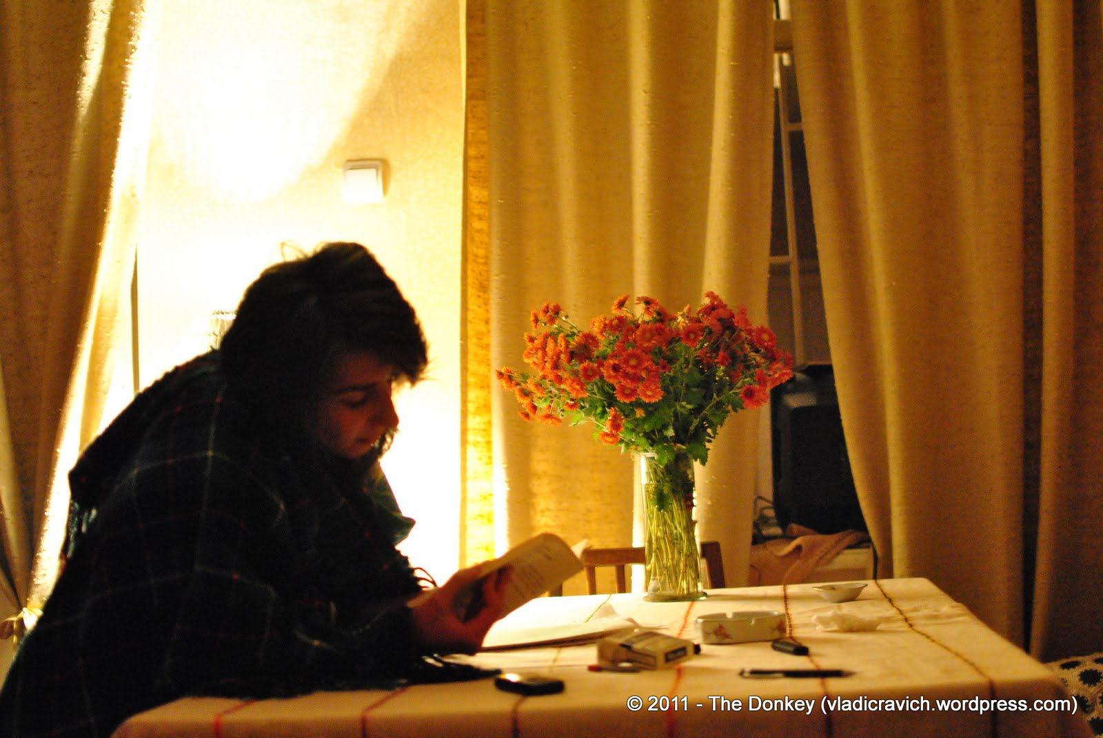A girl reads at Nikolas' home cafe