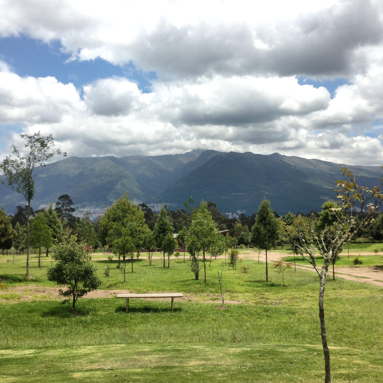 Ecuador8_02.JPG