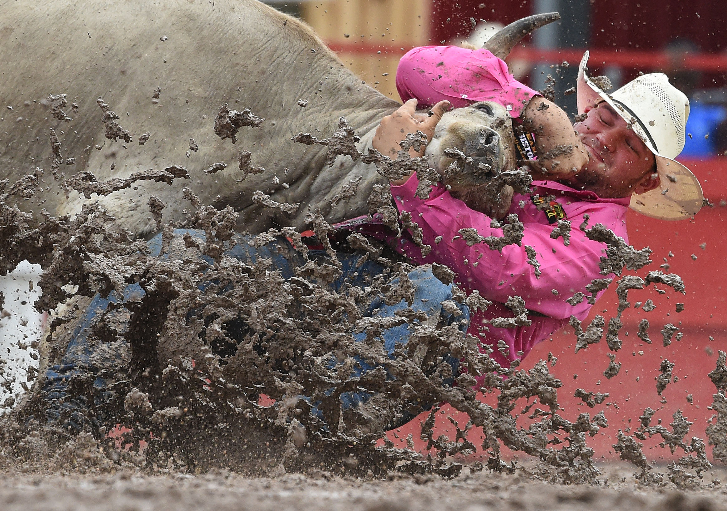 Bulldogger Mike McGinn, from Haines, Oregon, fights to bring down his steer as mud flies during the 7th performance at the 122nd Cheyenne Frontier Days Rodeo at Frontier Park in Cheyenne, Wyoming Thursday, July 26, 2018. A massive thunderstorm passed through the area making the arena a muddy mess for competitors.