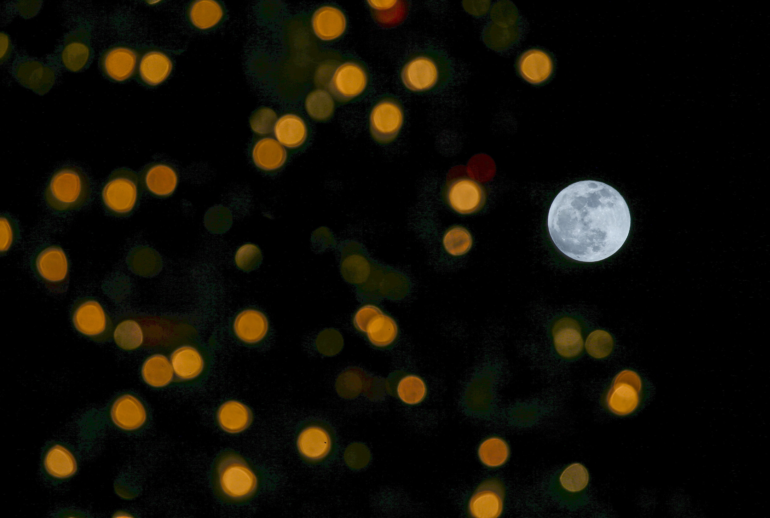 The full moon is seen behind a Christmas Tree at the Grand Park in downtown Los Angeles on Dec. 22, 2018.