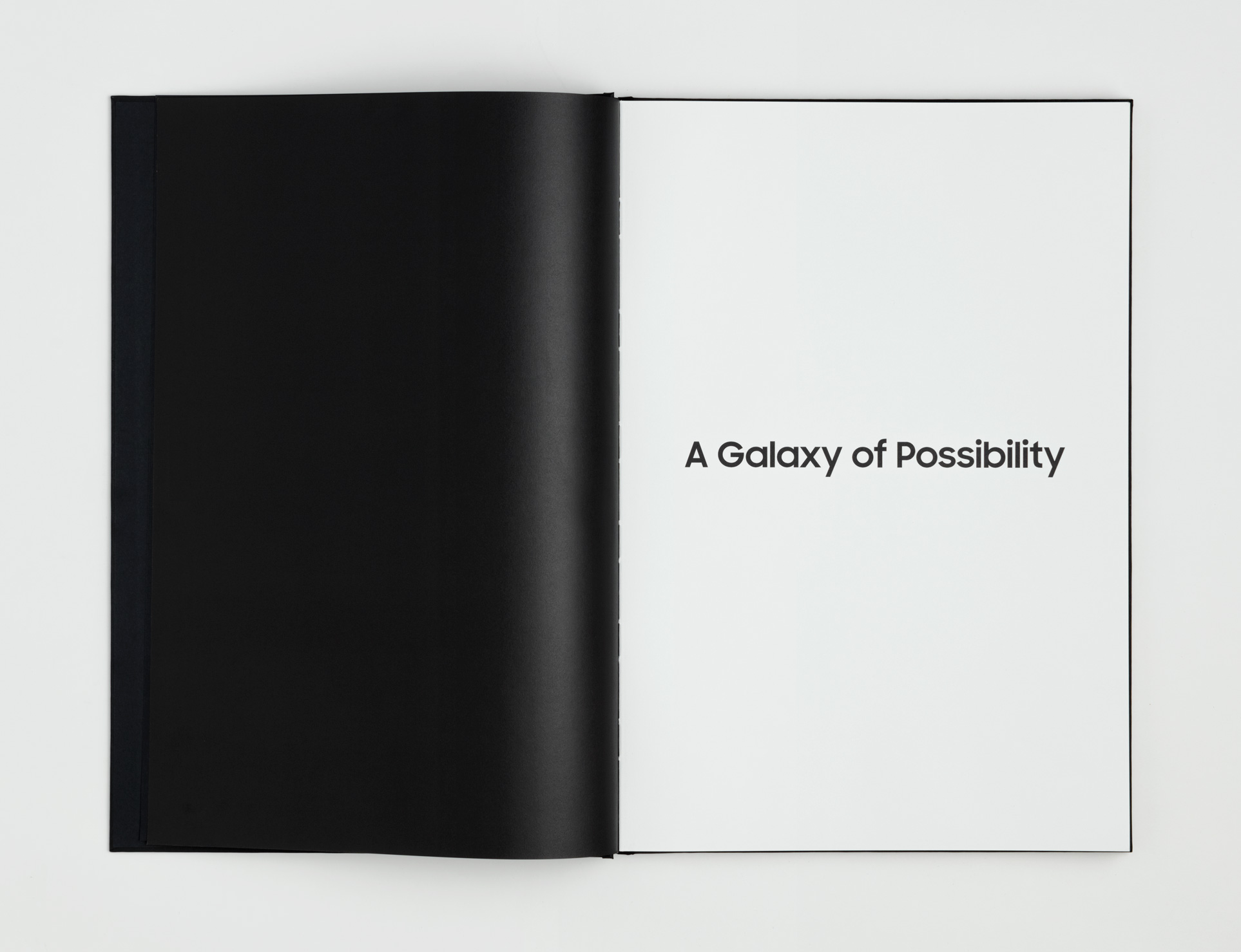 A_Galaxy_of_Possibility_Book_Spread_11.jpg