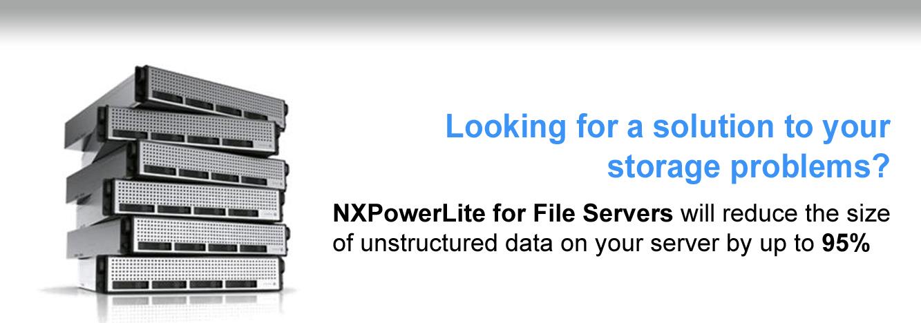 NXP_4.jpg